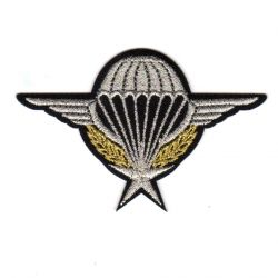 Ecusson Thermocollant Air Force Para