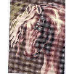 Kit Canevas Cheval Etalon 15 x 20 cm
