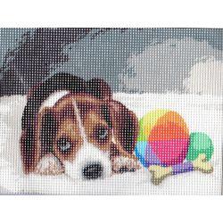 Kit Canevas Chiot Beagle 15 x 20 cm