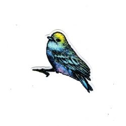 Patch Ecusson Thermocollant Oiseau Nature Brillant 3 x 5 cm
