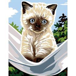 Kit Canevas complet Le Petit chat siamois 14 x 18 cm